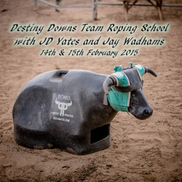 Destiny Downs Team Roping School