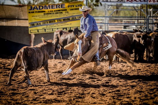 Wildhorse Cutting Show 2016